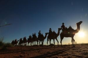 Uluru Camel Ride 056